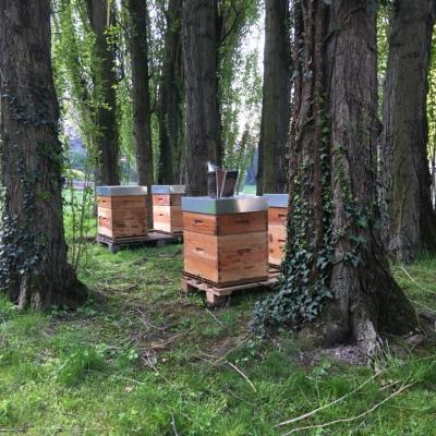ruches sur roubaix frédéric raviat com à la ferme fournes en weppes produits fermiers