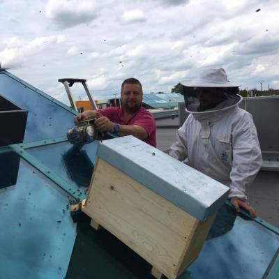frédéric raviat la belle de rosult miel apiculteurs nord pas de calais