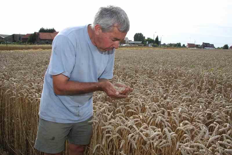 Bernard Théve com à la ferme