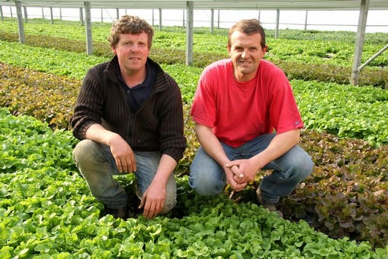 Produits fermiers bacquaert59 62 lille la bassee fournes en weppes 82 800x600 caf 1