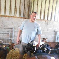 Dans l'élevage